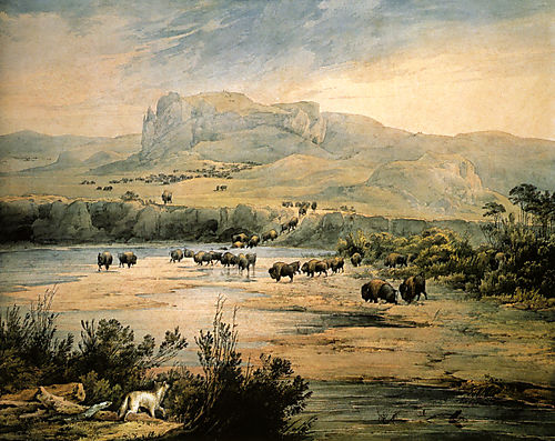 Landscape_with_Herd_of_Buffalo_on_the_Upper_Missouri__Watercolor_by_Karl_Bodmer_1833