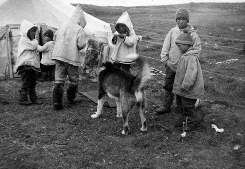 1115-Photo-Inuit-Children-and-Dog_g