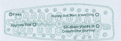 Fourmi a miel schema