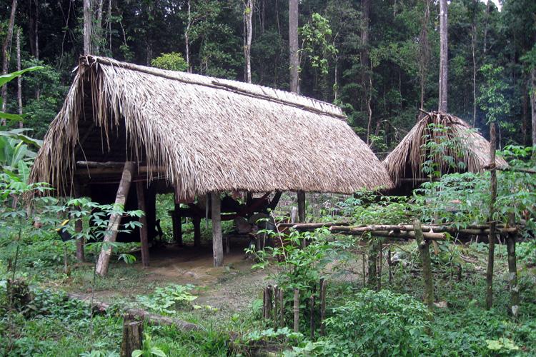 Amazonas_yanomami-hunting-camp_01gr