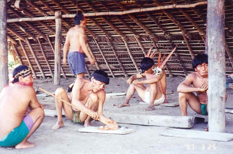 Yanomamo Yopo ceremony 2