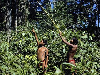 Yanomami-indian-hunters-amazonas-venezuela (1)