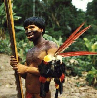 Yanomami (2)