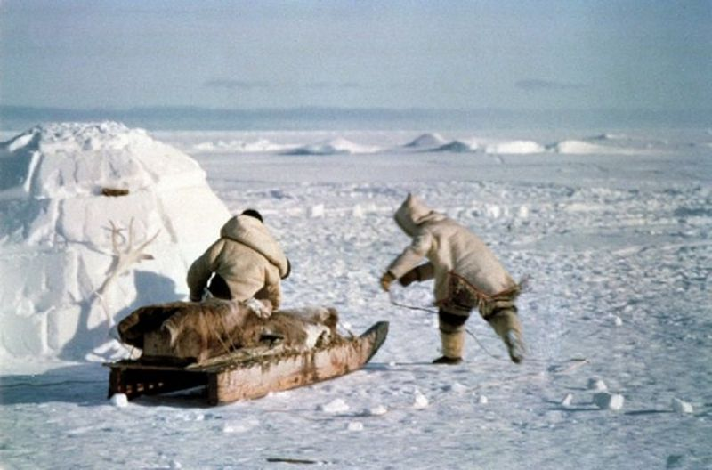 Igloo-esquimos_Arctic-Bay-