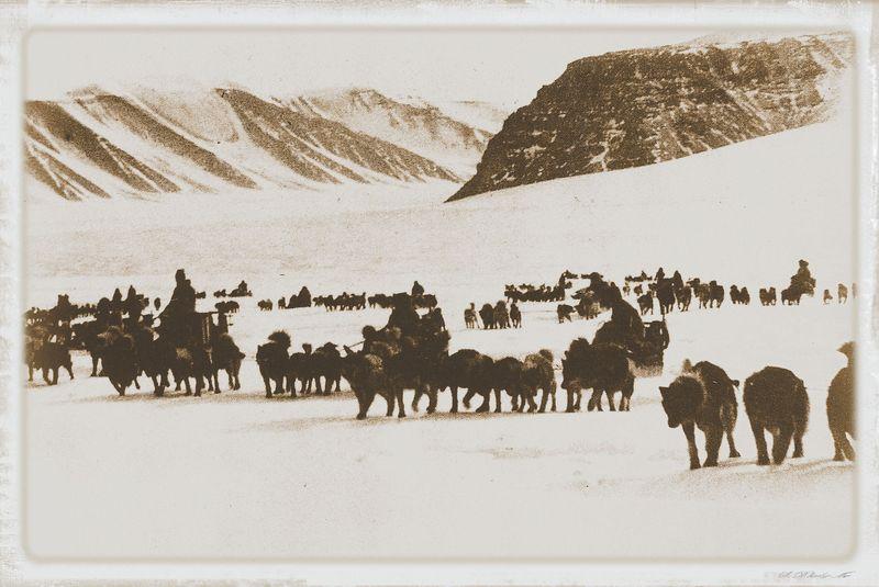 Inuit061