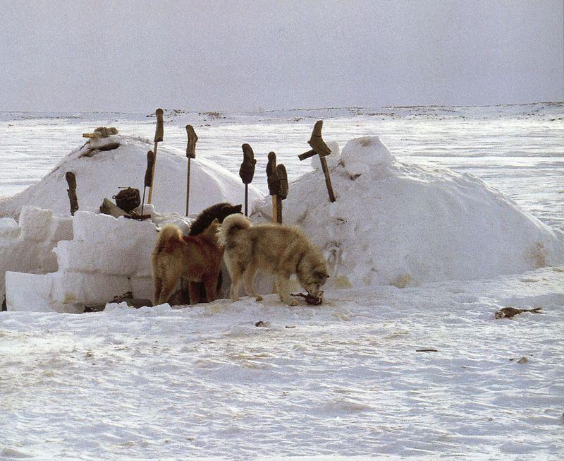 Inuit093