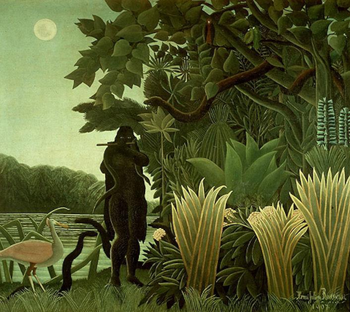 Jungle.image