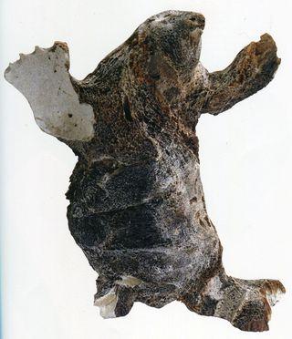 Inuit140