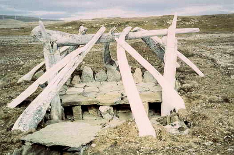Arctic05 (1)