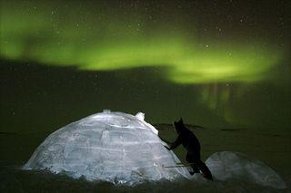 Aurores-boreales-ciel-canadien-337701
