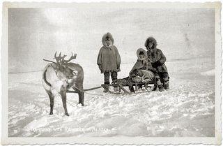 Traveling-reindeer