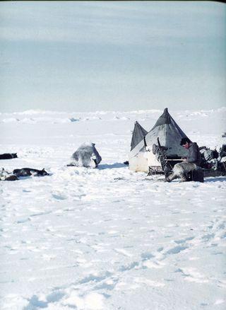 Inuit082