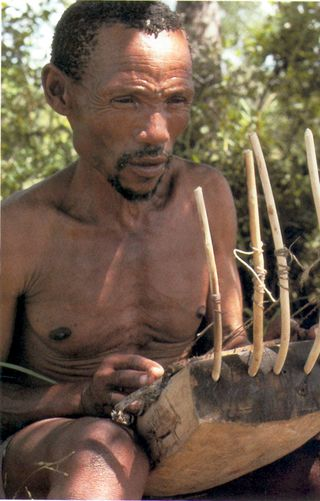 Bushmen2