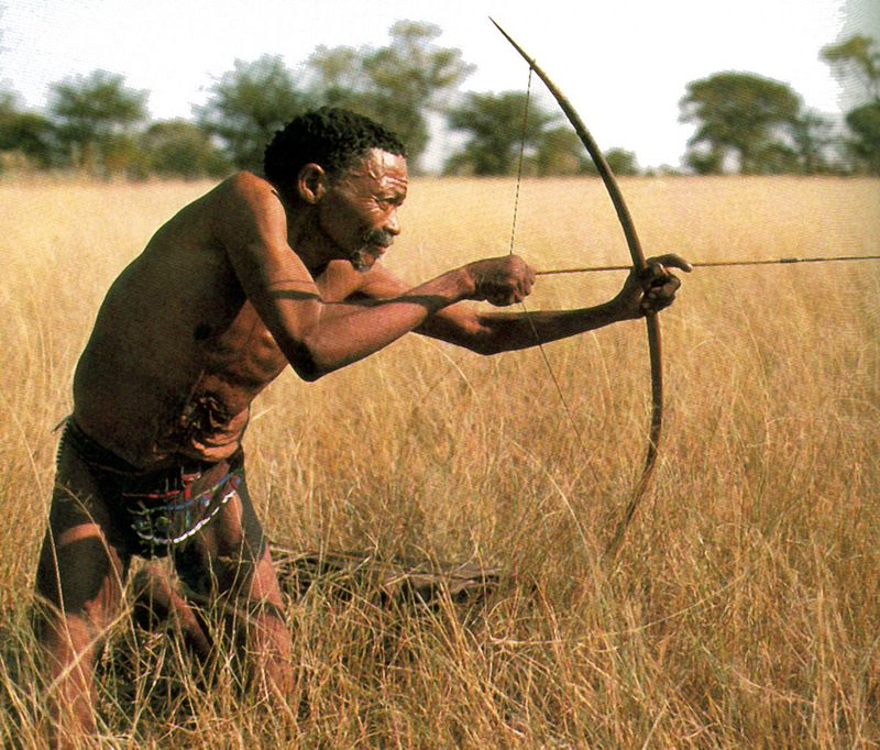 Bushmen3