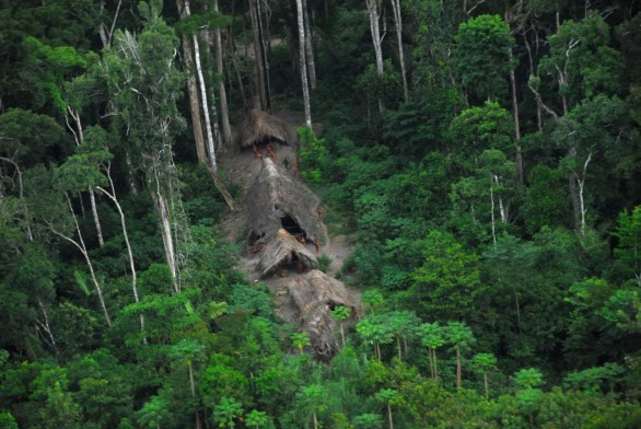Photo-of-the-uncontacted-tribe-photographed-last-year-in-the-brazilian-amazon-near-the-peruvian-border-c2a9-gleison-miranda-funai
