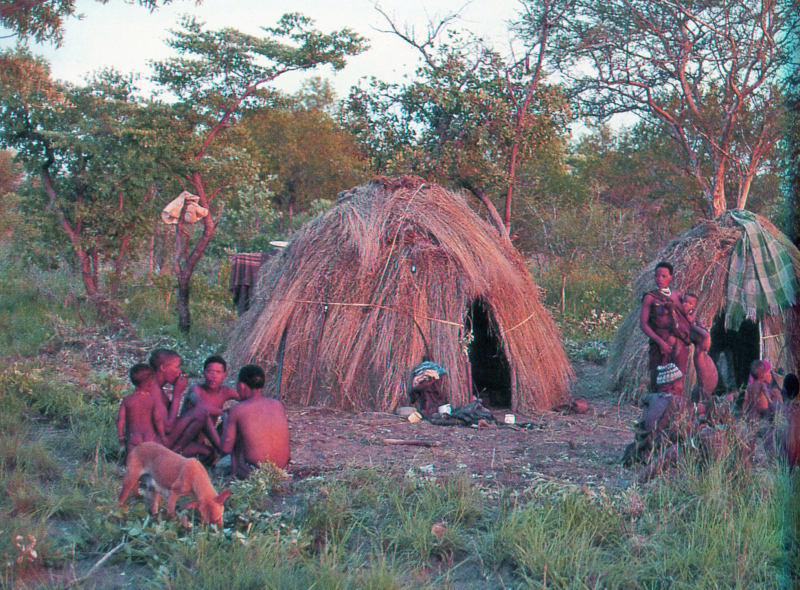 BUSHMEN953_modifié-1