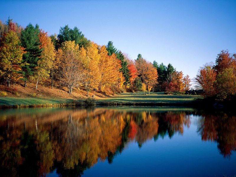 6136-Autumn_Reflections