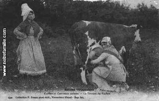 Cartes-postales-photos-La-Tireuse-de-vaches-VIMOUTIERS-61120-61-61508011-maxi