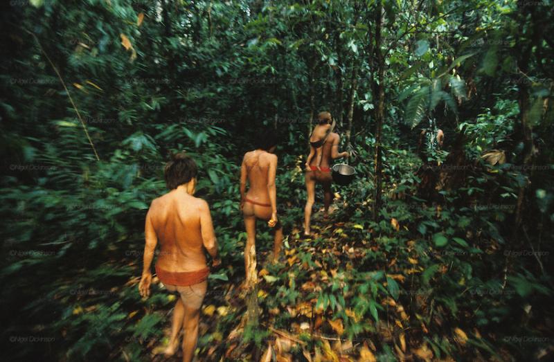 Yanomami-brazil006