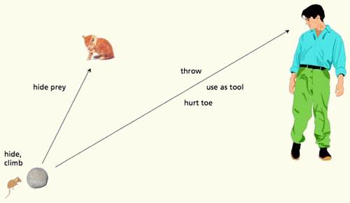 Affordance-chat-souris-humain