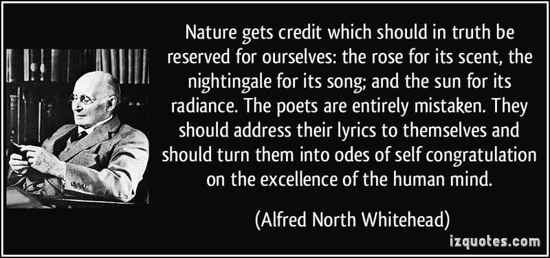Quote-nature-gets-credit-which-should-in-truth-be-reserved-for-ourselves-the-rose-for-its-scent-the-alfred-north-whitehead-355137