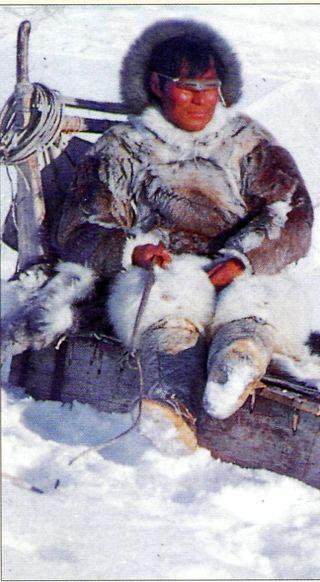 Inuit m
