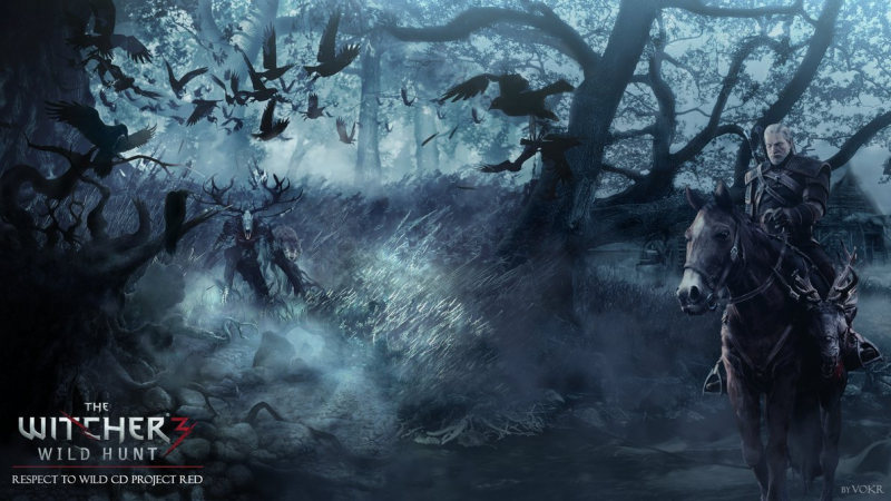 The_witcher_3__wild_hunt_wallpaper_by_vokr-d6x2fno