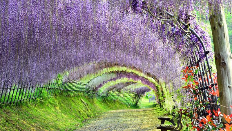 1-paysages-magnifiques-japon