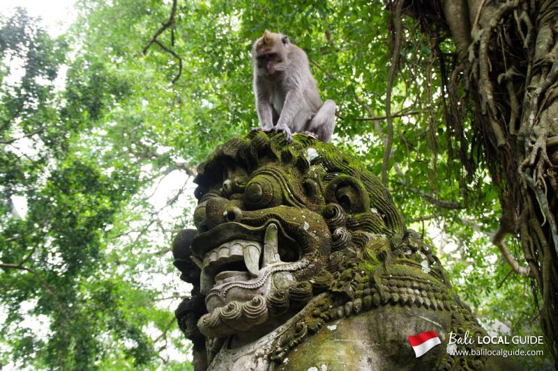 Bali-monkey-forest-ubud-4
