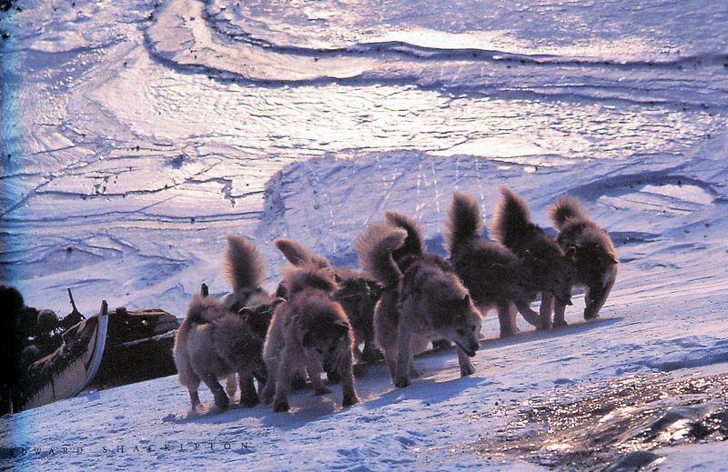 Inuit073