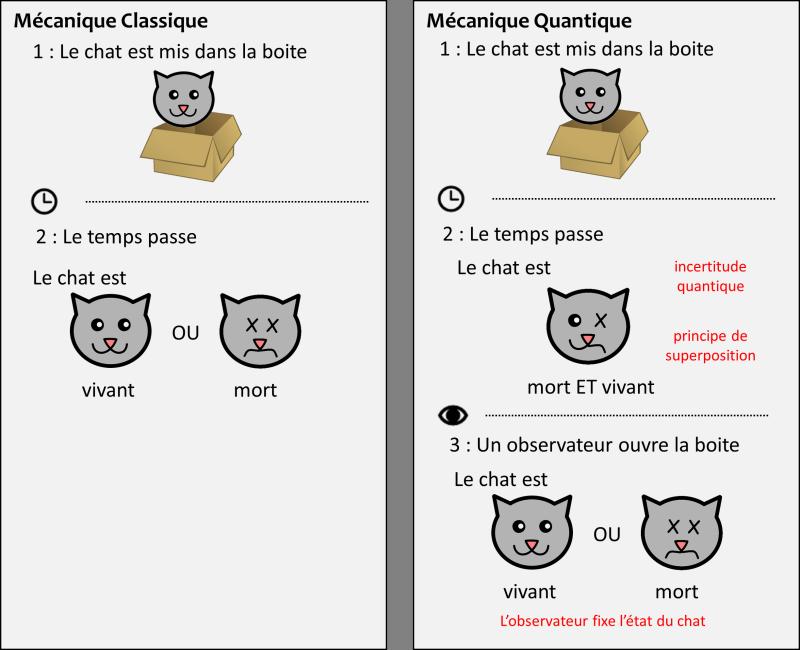 Chat_Quantique