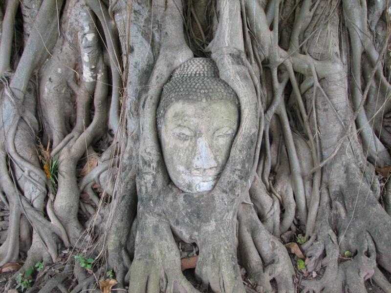 Ayutthaya_buddha_2