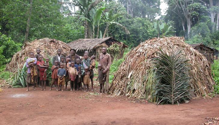 Groupe-Pygmees-lethnie-Baka-Cameroun_0_730_417