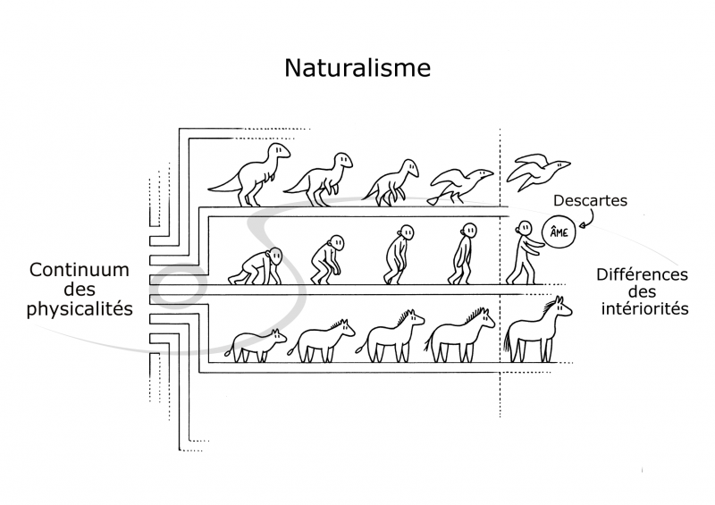 .naturalisme_tagged_m