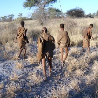 Bushmen-hunt-petr-kosina
