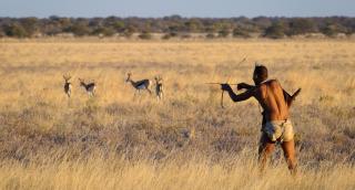 Kalahari-Bushman2-1024x550