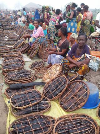 MONGO CONGO-AUTREMENT .COM