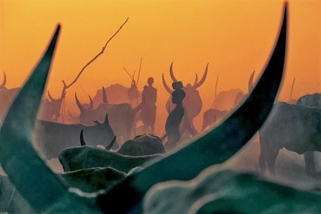 Ob_61772e_impresionantes-imagenes-de-una-tribu