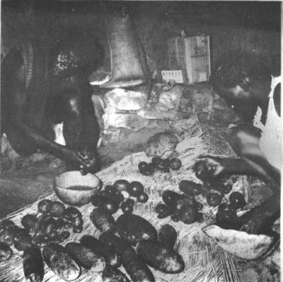 Mofu www.auletch.com .le-mythe-pierres-de-pluie-chez-les-mofu
