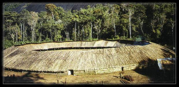 Maison-villageyanomamiamazonie-le-territoire-des-amc3a9rindiens-yanomami-est