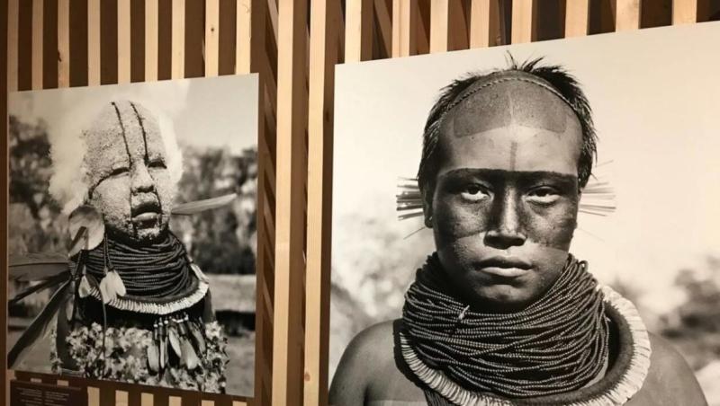 Exposition_Amazonie_Le_Chamane_et_lesprit_de_la_forêt_Nantes-e1562097687934