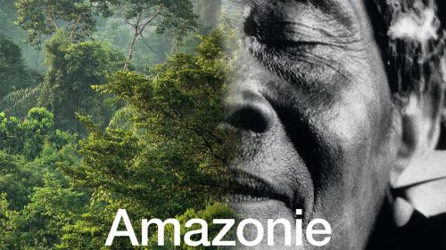 W1240-p16x9-exposition_amazonie_chamanisme_le_chamane_et_la_pensee_de_la_foret_geneve_2016_0