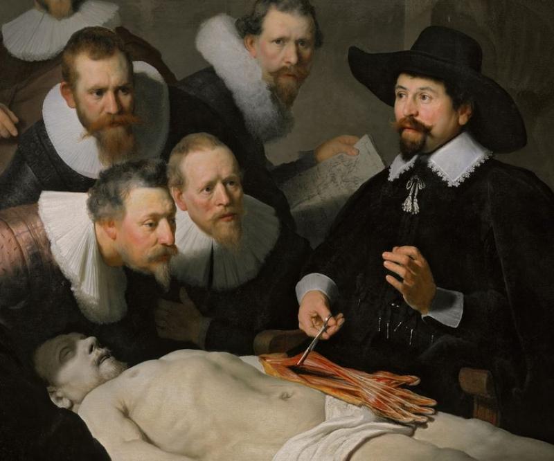 Rembrandt-anatomie