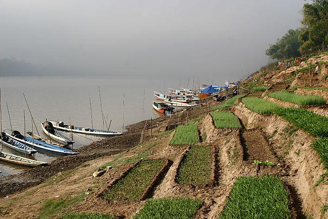 Mekong11
