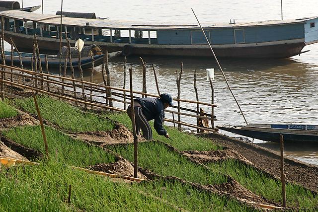 Mekong12
