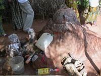 Benin20105
